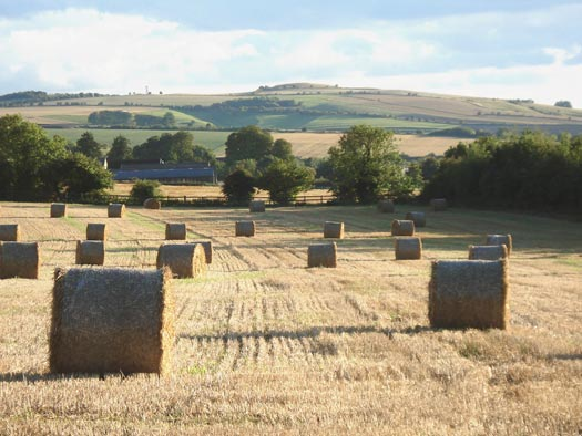 Looking towards Idstone from Ashbury (copyright David Hockley)